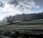 IMG_2078_Edit_2